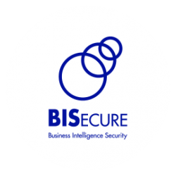 Business Intelligence Security